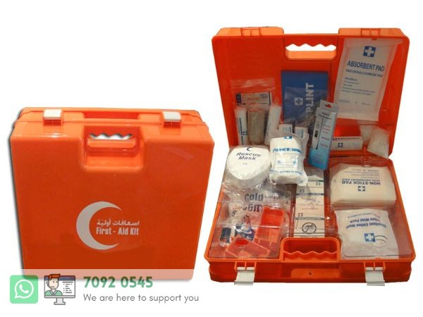 First Aid Box (L)100-P(F-012H) Large #118161
